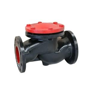 Cast iron flange check valve