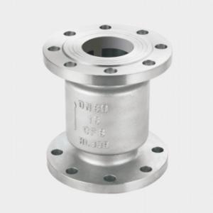 Vertical flange check valve