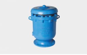 Carx composite exhaust valve