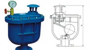 Compound exhaust valve