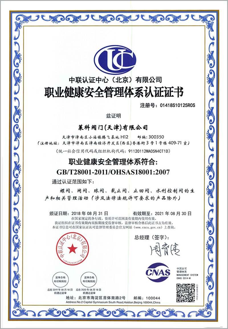 OHSAS18001z