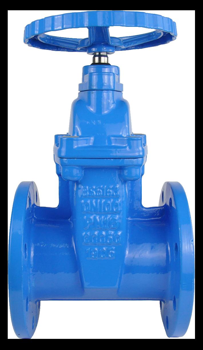 resilent gate valve
